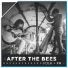 A - AFTER THE BEES